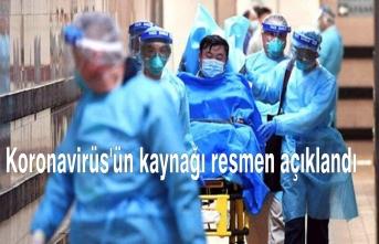 Koronavirüs'ün kaynağı resmen açıklandı