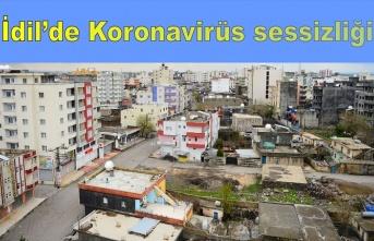 İdil'de koronavirüs sessizliği