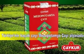 Kaçak çaya karşı Mezopotamya Çayı piyasada