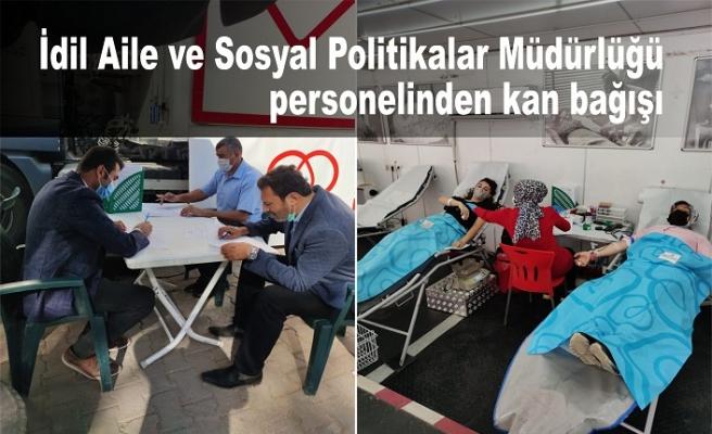 İdil Aile ve Sosyal Politikalar Müdürlüğü personelinden kan bağışı