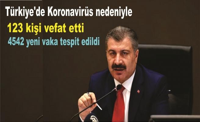 Türkiye'de 19 Kasım günü koronavirüs nedeniyle 123 kişi vefat etti, 4542 yeni vaka tespit edildi