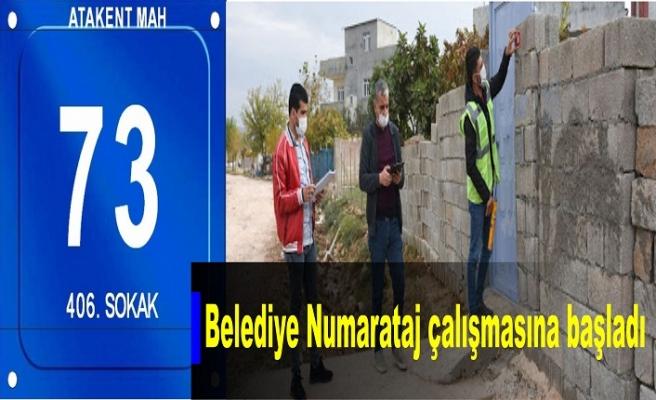 İdil Belediyesi 'Numarataj' çalışmasına başladı