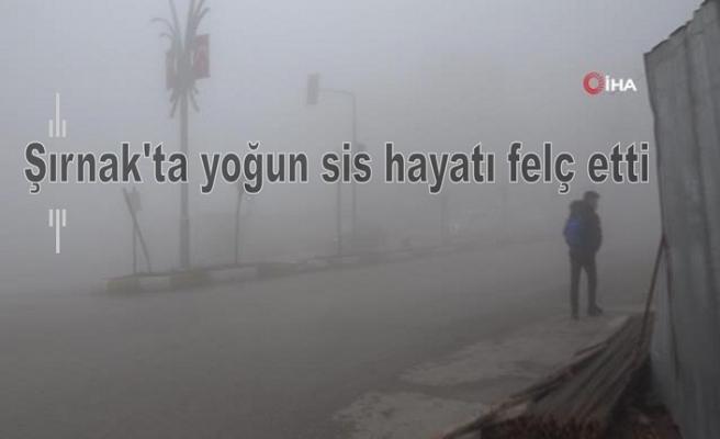 Şırnak'ta yoğun sis hayatı felç etti