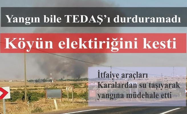 Yangın bile TEDAŞ'ı durduramadı köyün elektriğini keserek yangına müdehalleyi geciktirdi