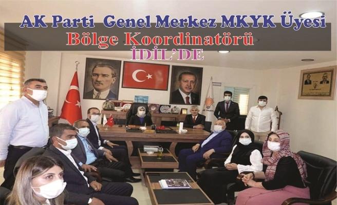 AK Parti Bölge koordinatörü İdil'de