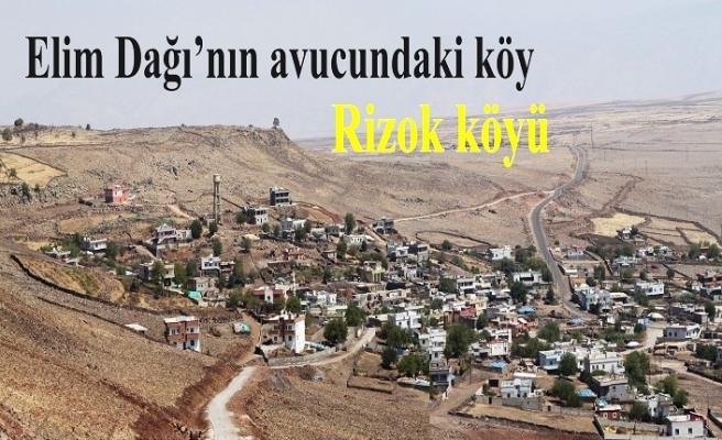 Elim'ın avucundaki köy: Oymak Köyü