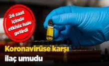 Molnupiravir adlı ilaç Covid-19'u 24 saat içinde etkisiz hale getirdi