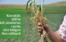 Kuraklık idil'in ekili alanlarını vurdu Afet bölgesi ilan edilmeli