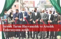 Şırnak Tarım Hayvancılık ve Arıcılık Federasyonu açıldı