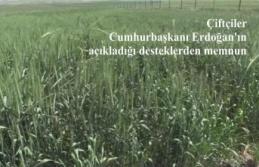 Çiftçiler Cumhurbaşkanı Erdoğan'ın açıkladığı desteklerden memnun
