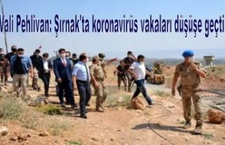 Vali Pehlivan: Şırnak'ta koronavirüs vakaları...