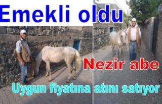 Satlık At