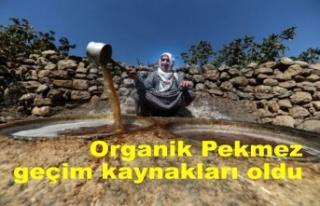 Organik üzümden ürettikleri pekmezler geçim kaynakları...