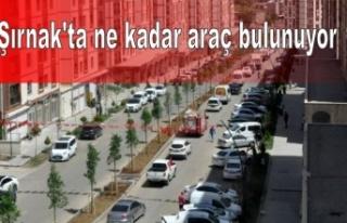 Şırnak'ta ne kadar araç bulunuyor ?