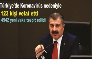 Türkiye'de 19 Kasım günü koronavirüs nedeniyle...