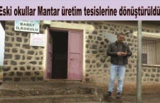Eski okullar Mantar üretim tesislerine dönüştürüldü