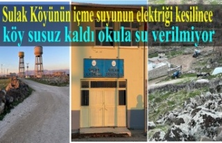 DEDAŞ İçme suyun elektriğini kesince köy susuz...