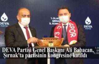 DEVA Partisi Genel BaşkanıAli Babacan,Şırnak'ta...
