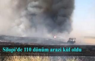 Silopi'de 110 dönüm arazi kül oldu