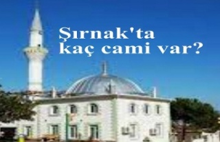 Şırnak'ta kaç cami var?