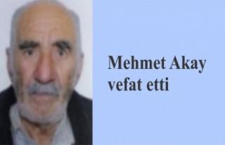 Mehmet Akay vefat etti