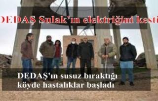 DEDAŞ Sulak köyünün elektriğini kesti hayvanlar...