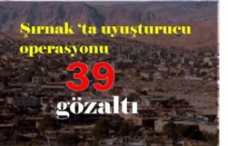 Şırnak'ta uyuşturucu ve kaçakçılık operasyonlarında...