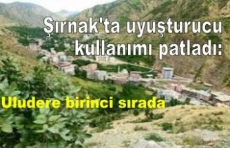 Şırnak'ta uyuşturucu kullanımı patladı: Uludere birinci sırada