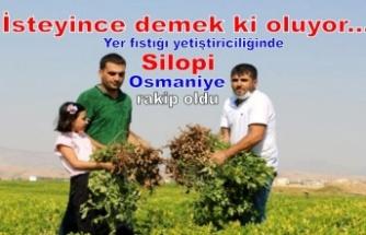 Yer fıstığı yetiştiriciliğinde Osmaniye'ye rakip olduk