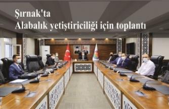 Şırnak'ta Alabalık yetiştiriciliği için toplantı