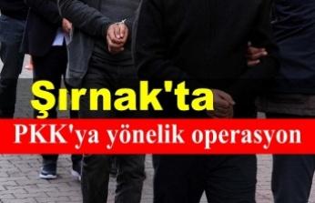 Şırnak'ta PKK'YE yönelik operasyon